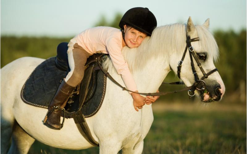 positieve effecten van paarden op kinderen